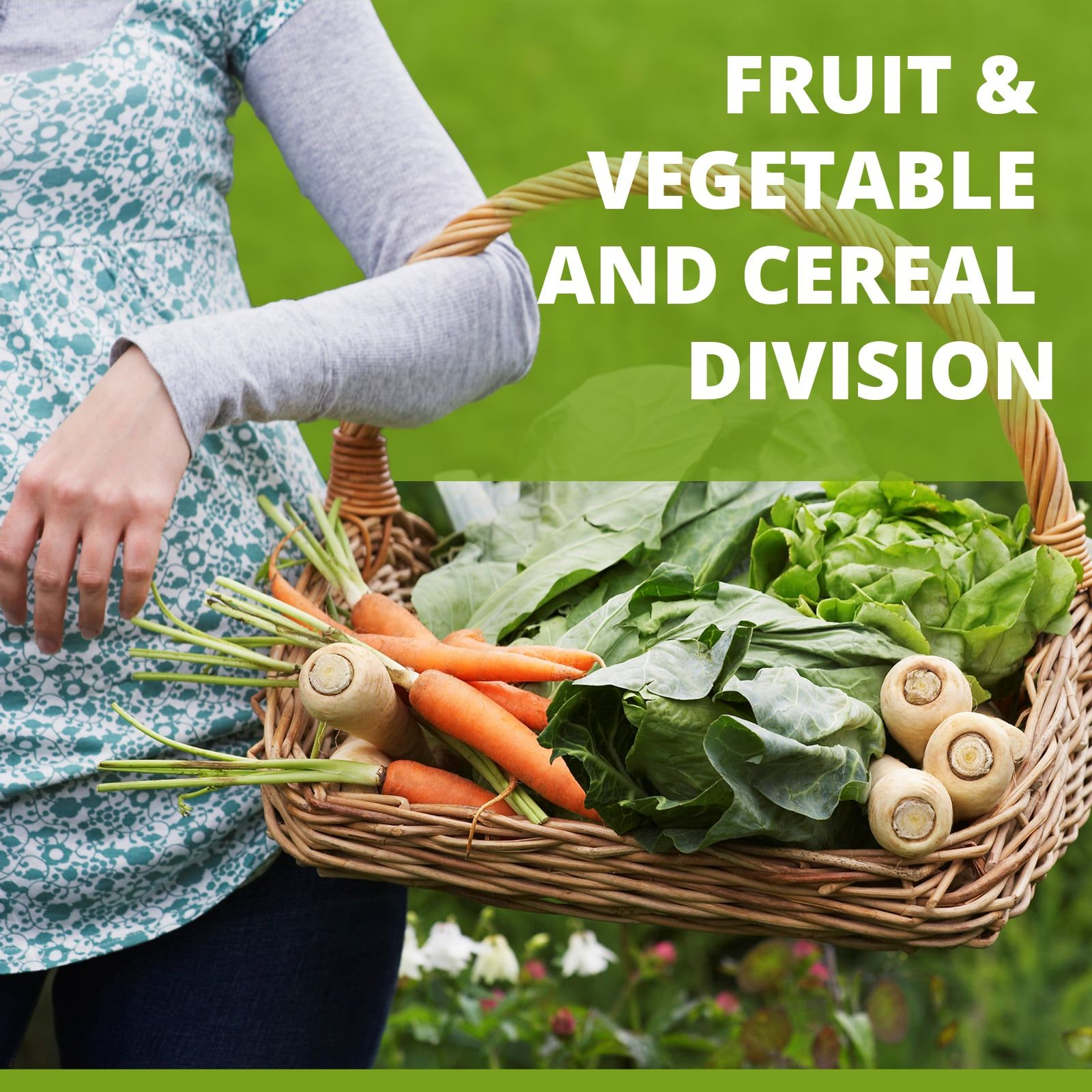 FRUIT, VEGETABLE and CEREAL DIVISION